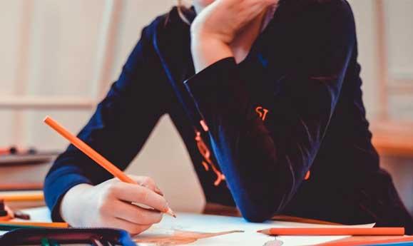 strategie produse elevi